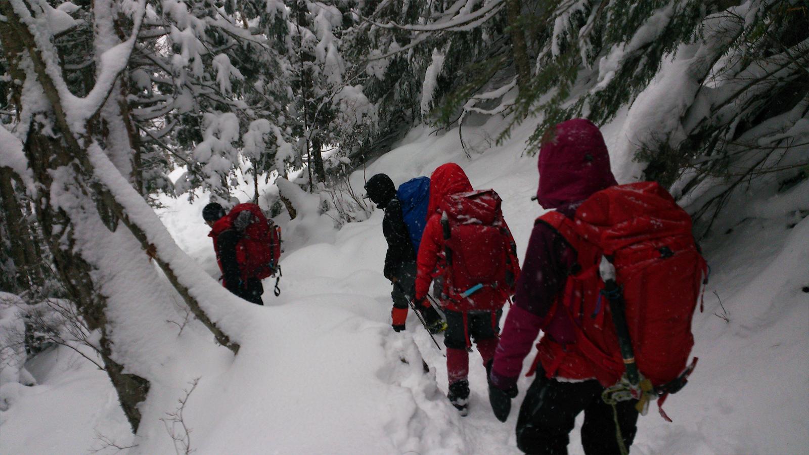 八ヶ岳 南沢 小滝 アイスクライミング